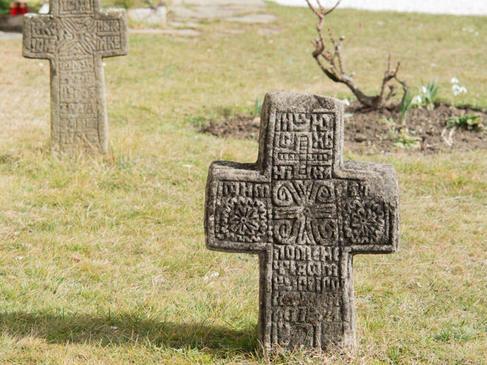 Une découverte archéologique a révélé un cimetière pour chien.