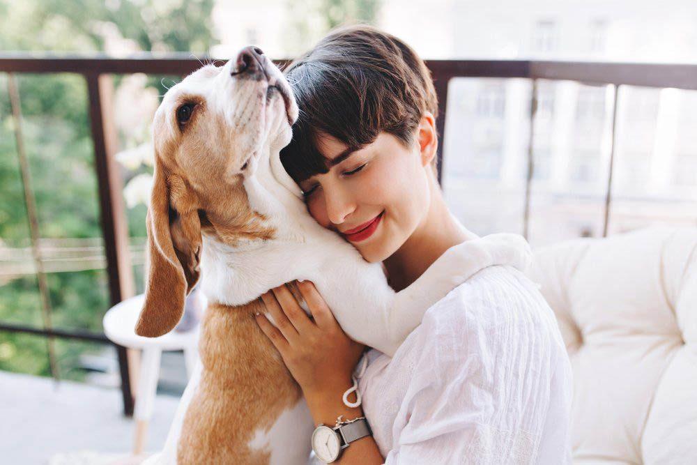Montrez de la gratitude envers les câlins de votre chien.