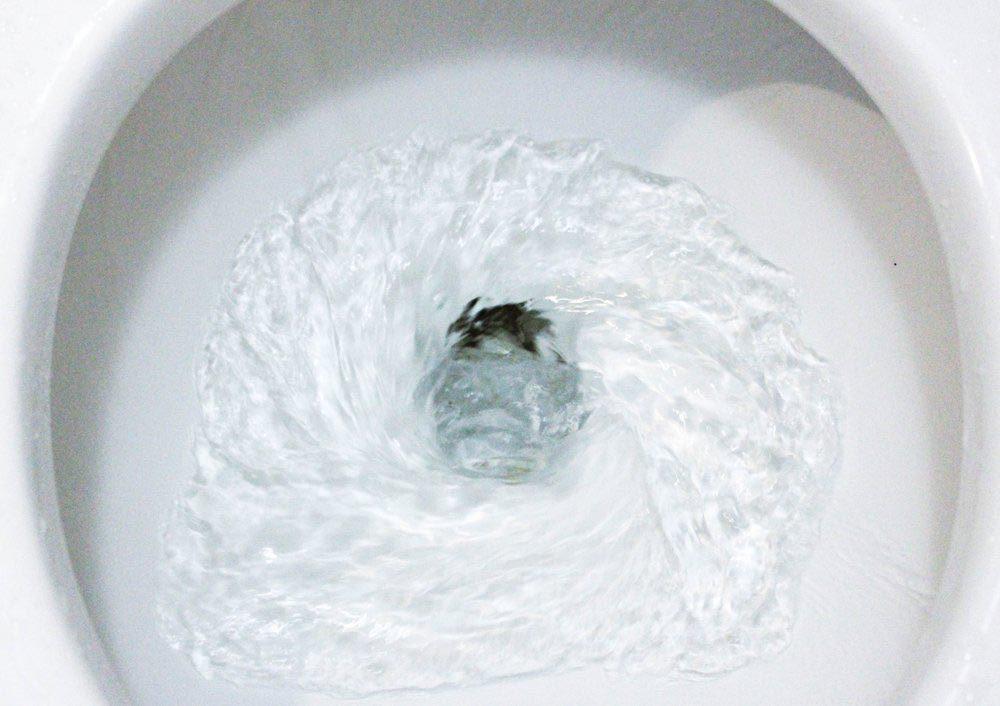 Le BPA contenu dans le plastique irrite les intestins.
