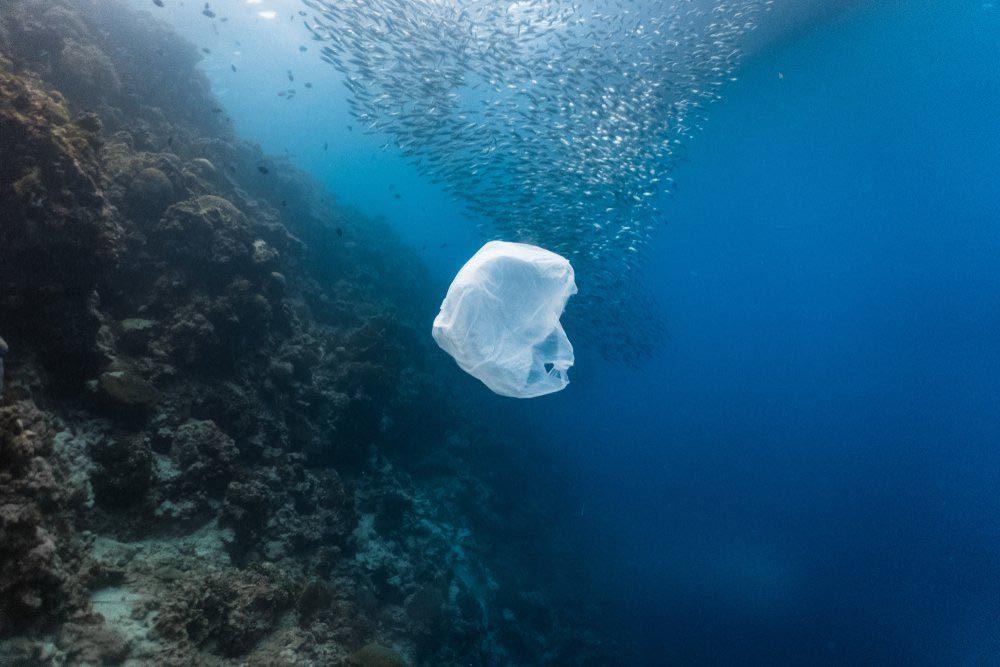 Le plastique menace les océans.