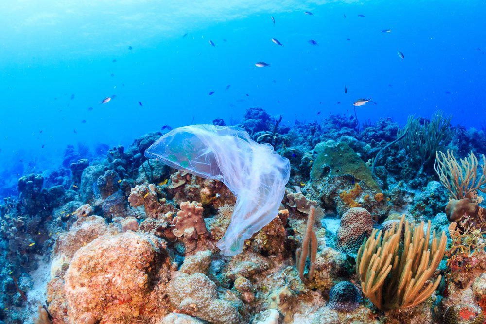 Le plastique menace les récifs coralliens.