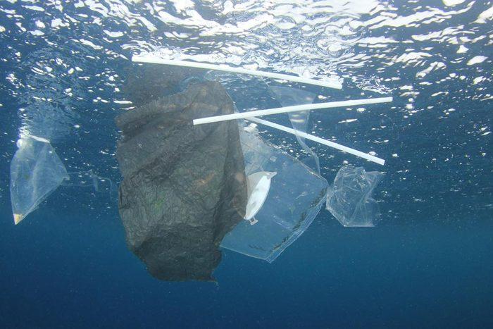 Les pailles en plastiques posent problème.