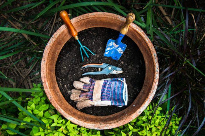 Produit fait maison: fertilisant pour le jardin.