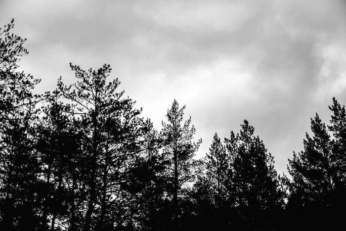 Lors d'un orage, évitez de vous tenir sous un objet fait en bois.