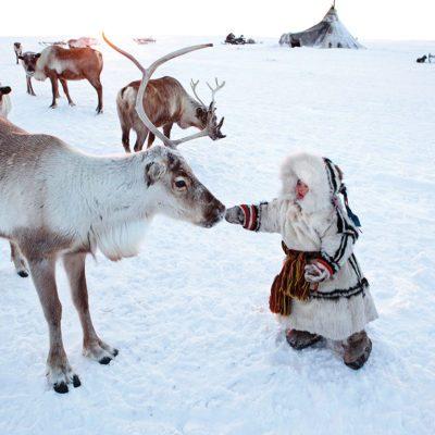 Une petite fille nénètse avec un renne en Sibérie occidentale.