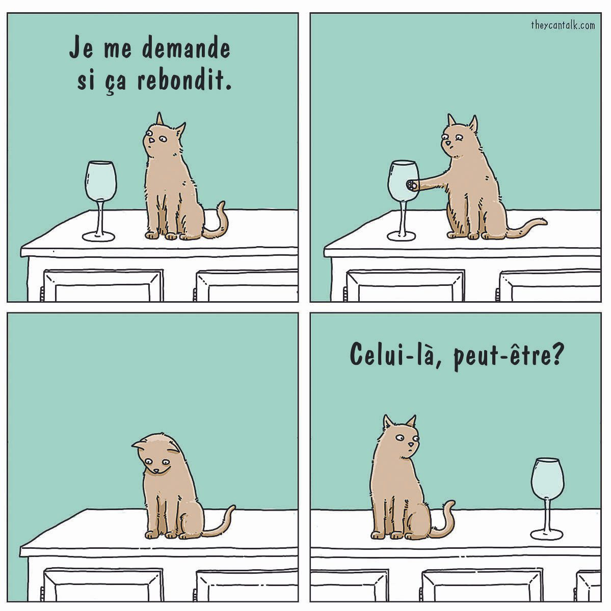 Blague : caricature des chats.