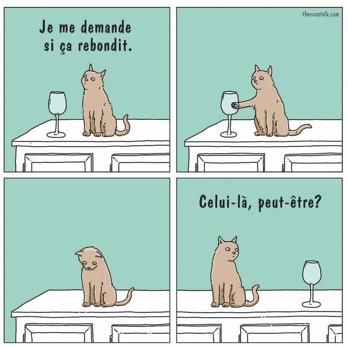 Blague : caricature des chats.