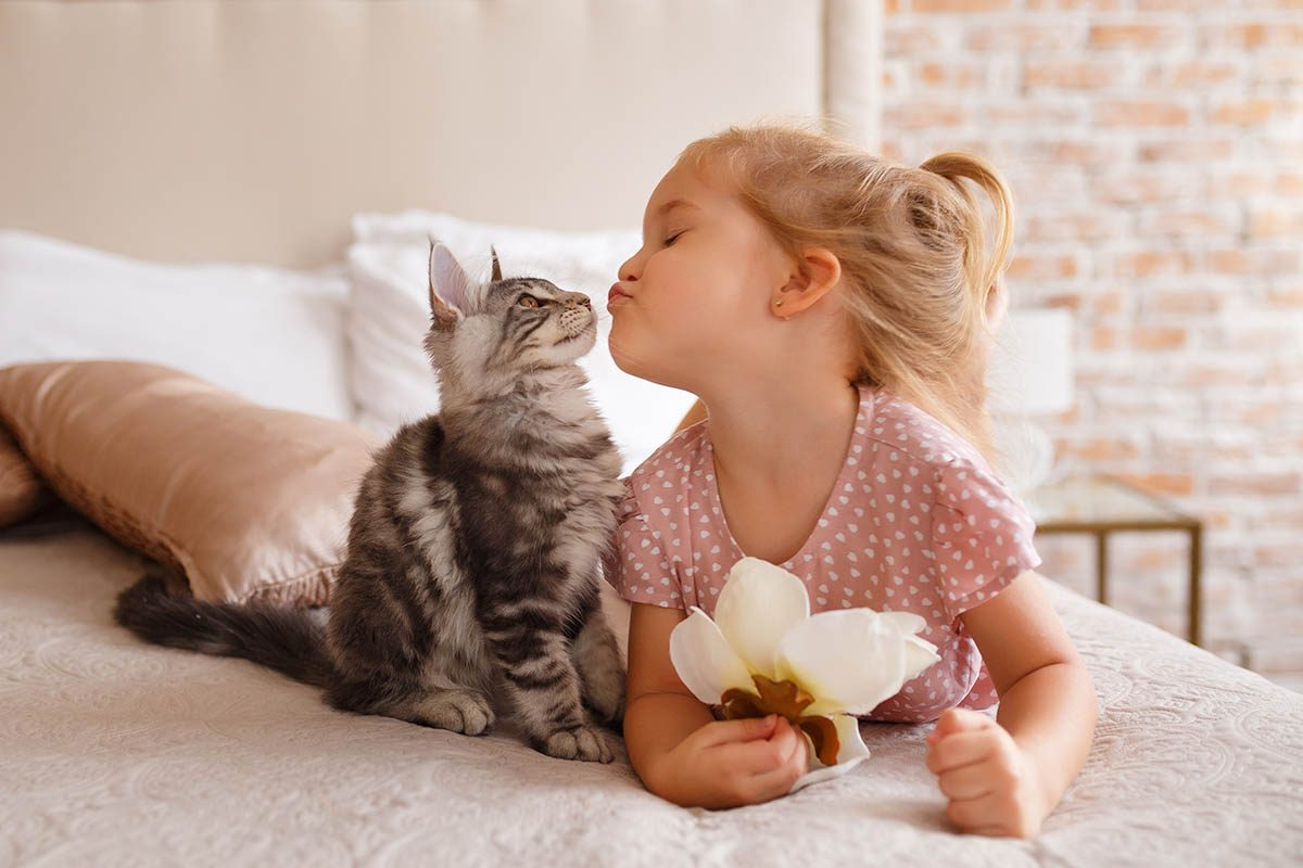 Chien et chat : vérifiez qu'ils aiment les enfants avant de les laisser jouer avec.