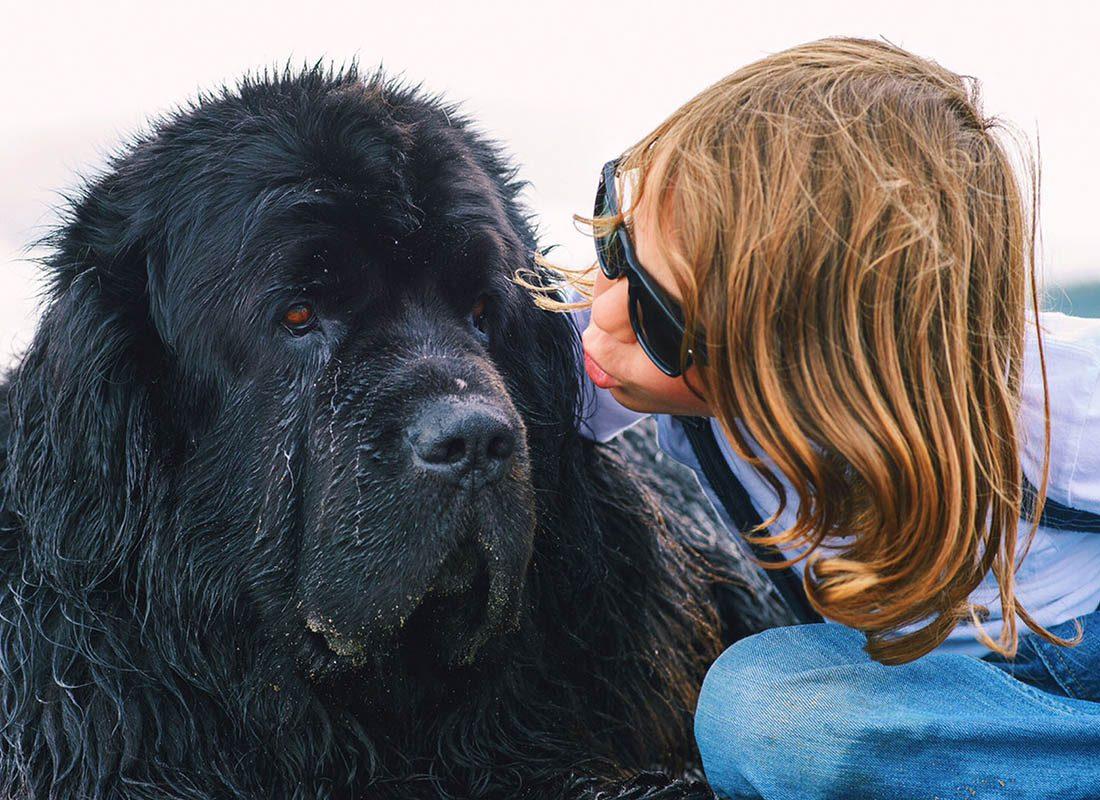 Expressions faciales chez le chien : couper le contact visuel montre qu'il se sent à l'aise avec les humains.