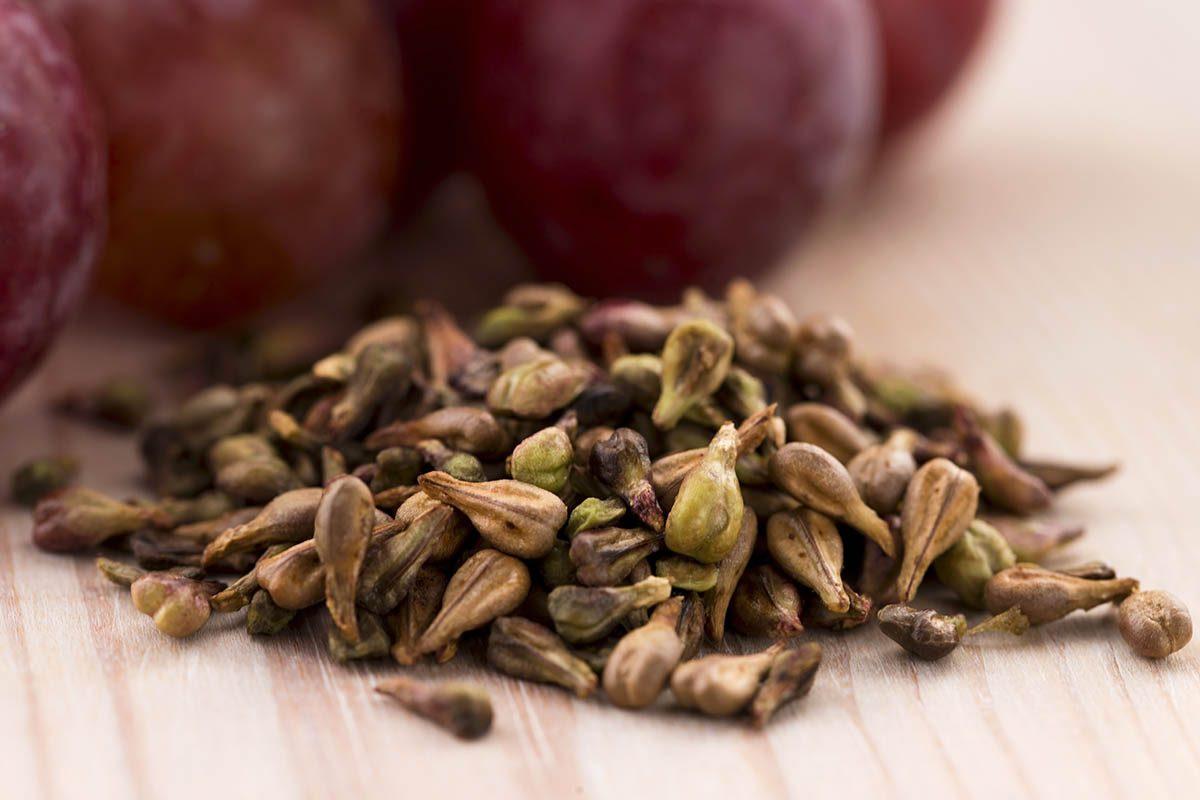 L'extrait de pépins de raisin possède de nombreuses vertus.