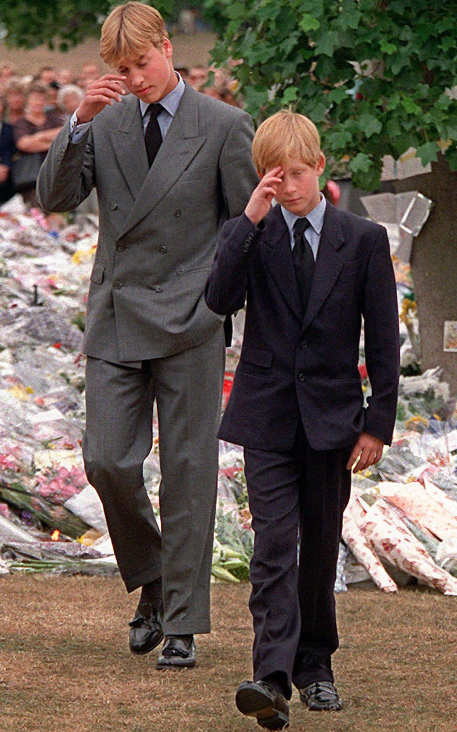 Famille royale : photo de William et Harry lors de l'hommage à leur mère.