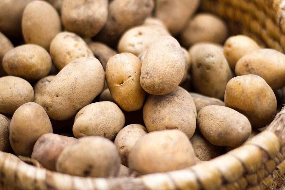 Pour soigner les hémorroïdes, appliquez une compresse à base de pomme de terre.
