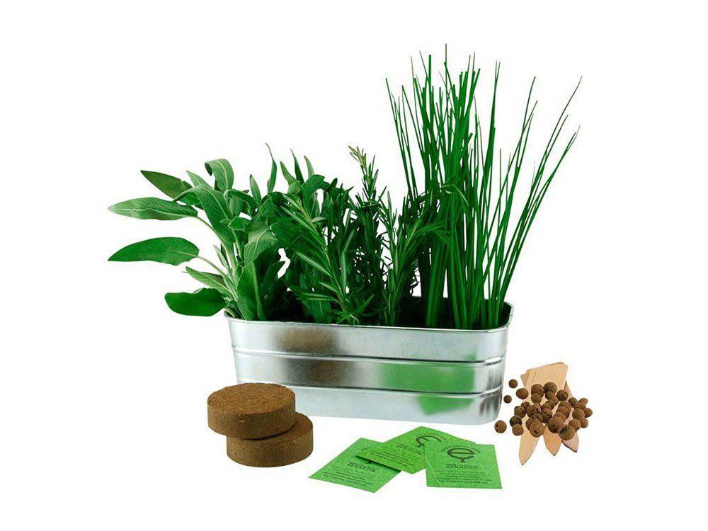 Cadeau de noël : la trousse de départ d'herbes méditerranéennes Indigo Design Studio