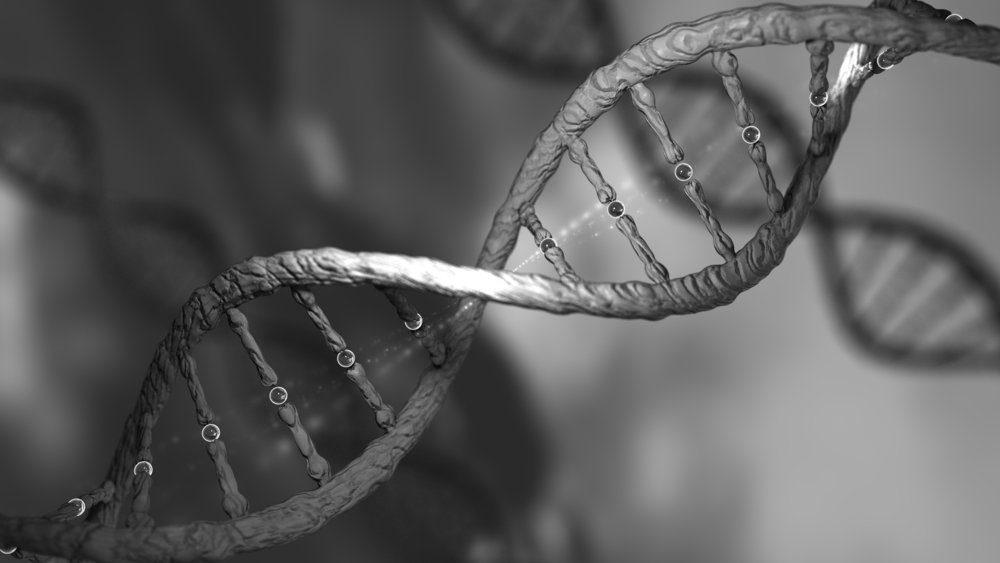 La naissance probable du premier bébé OGM fait partie des découvertes scientifiques de l'année.