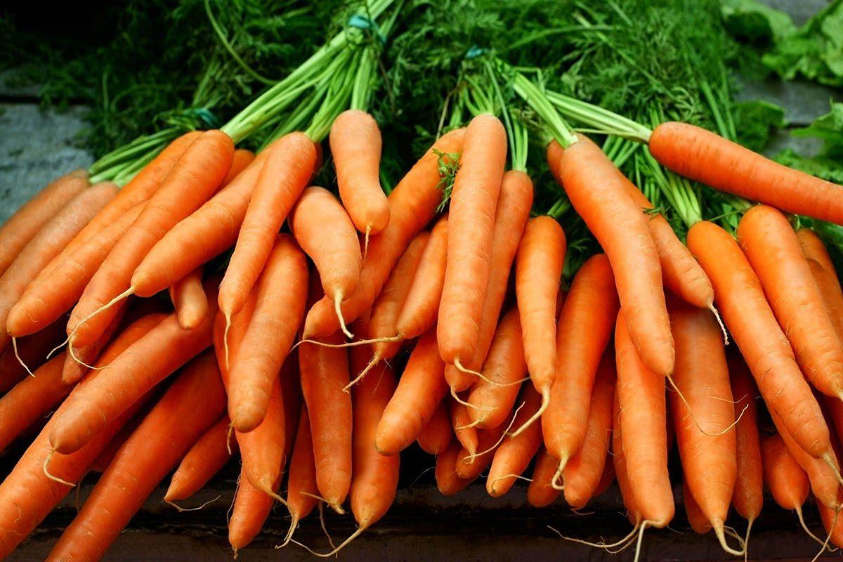 Mythe sur la santé : les carottes améliorent la vue