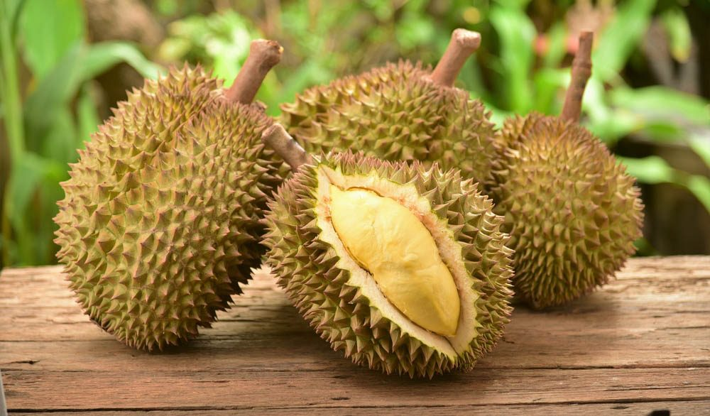Aliments dangereux : attention au durian.