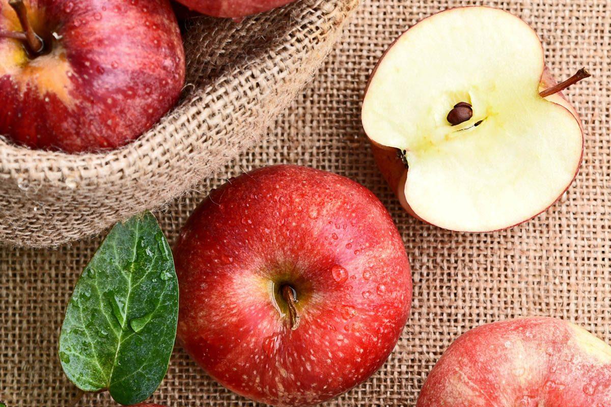 Aliments dangereux : ne mangez pas les pépins des pommes.