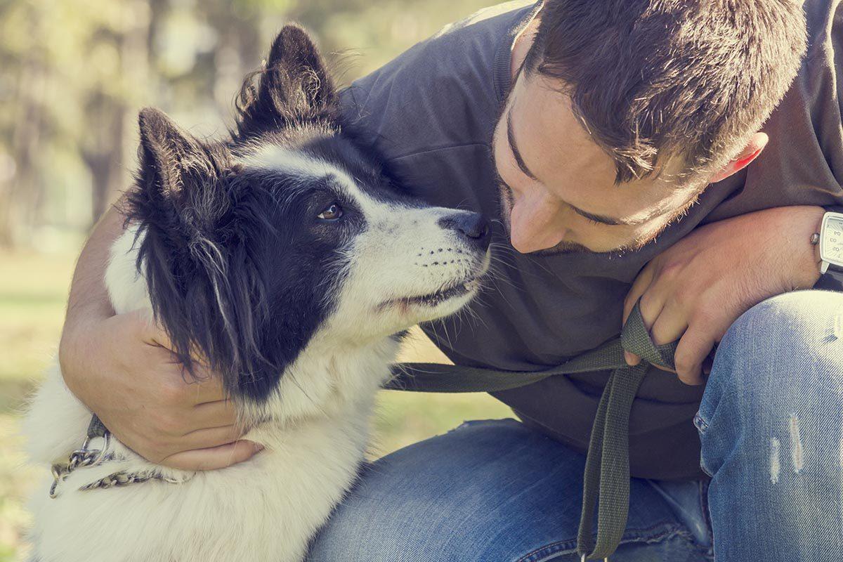 Conseil de vétérinaire : acceptez de lui dire adieu.