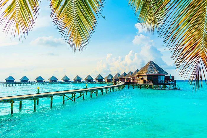 Destination au soleil : les Maldives.