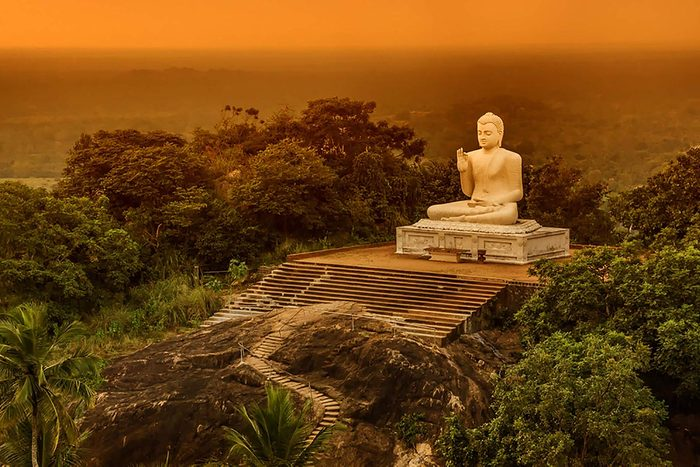 Destination au soleil : les Sri Lanka.