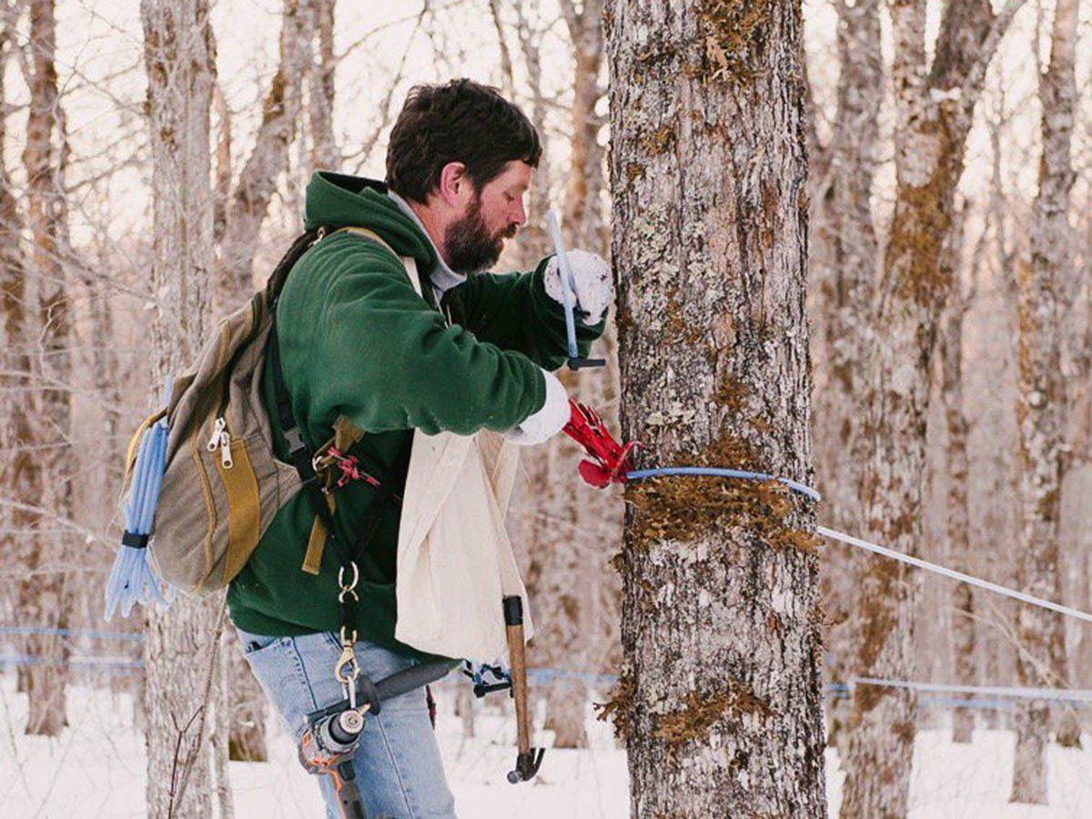 Hiver au Canada : flattez votre dent sucrée en Nouvelle Écosse.