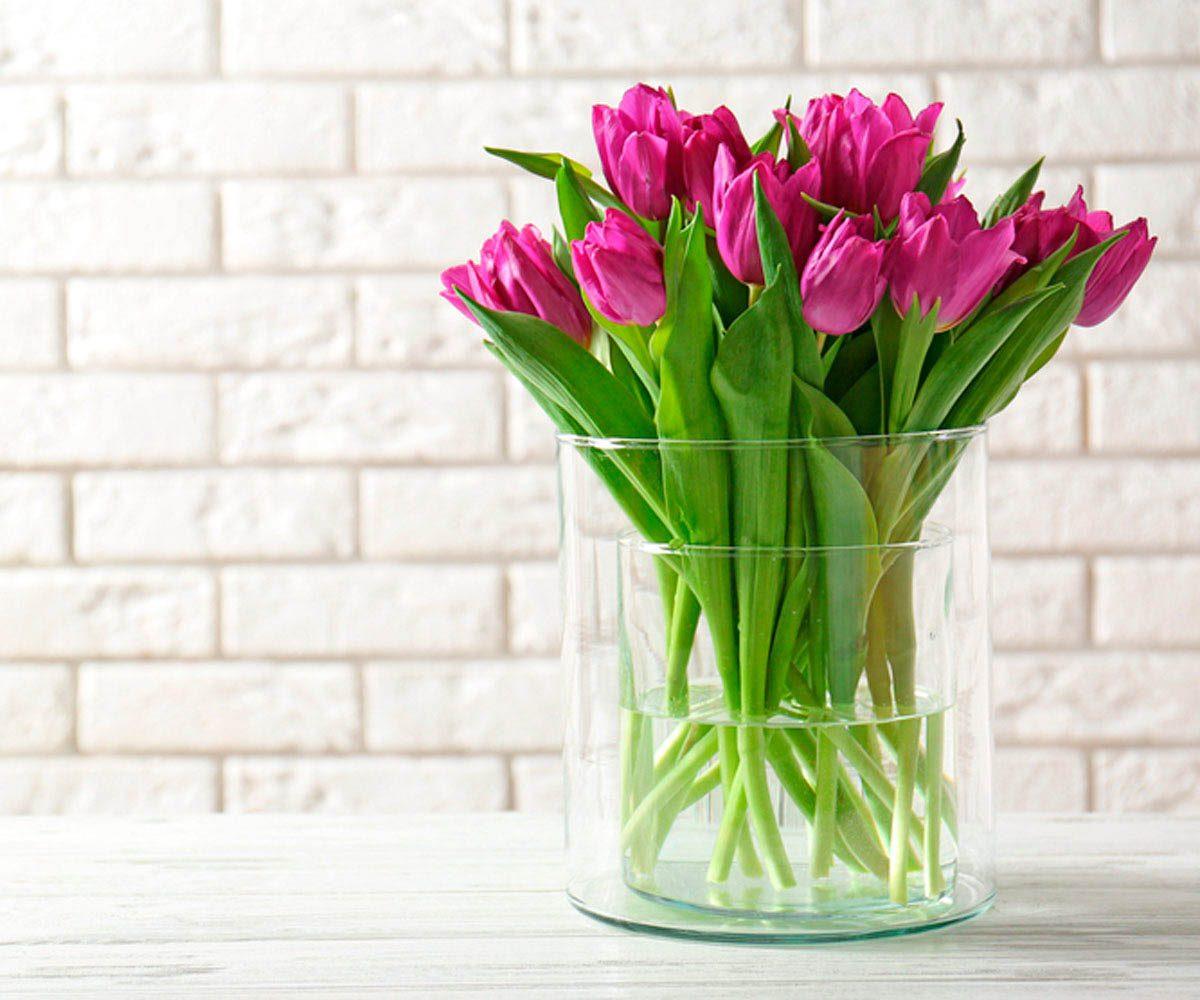 Pour une maison plus lumineuse, décorez-la avec des fleurs de couleurs vives.