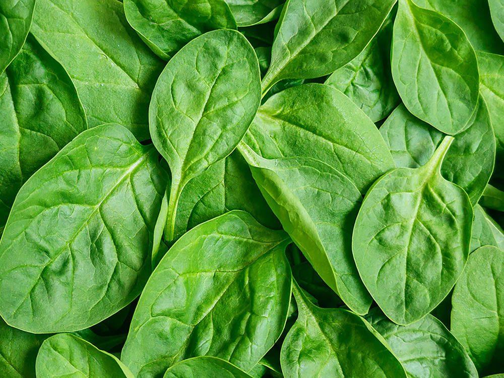 La mijoteuse ne dois jamais servir à cuire des légumes verts.