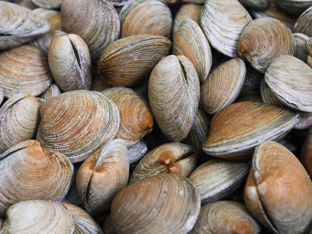 La mijoteuse ne dois jamais servir à cuire des fruits de mer.