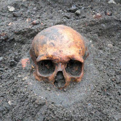 Mystères non résolus de l'année : des ossements sont retrouvés dans le sous-sol