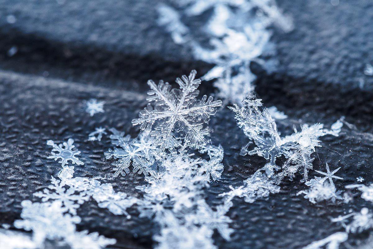 Certains flocons de neige sont identique.
