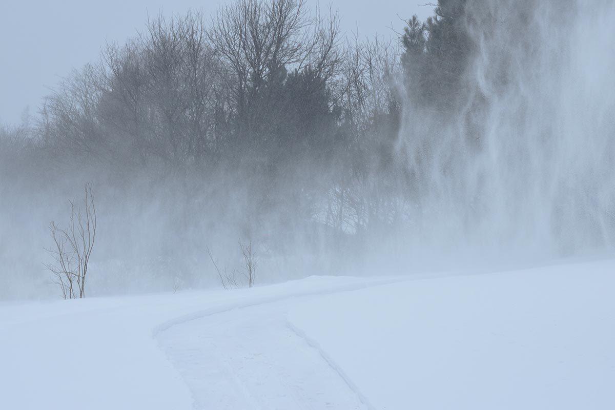 La tempête de neige de l'hiver 2015 est mémorable.