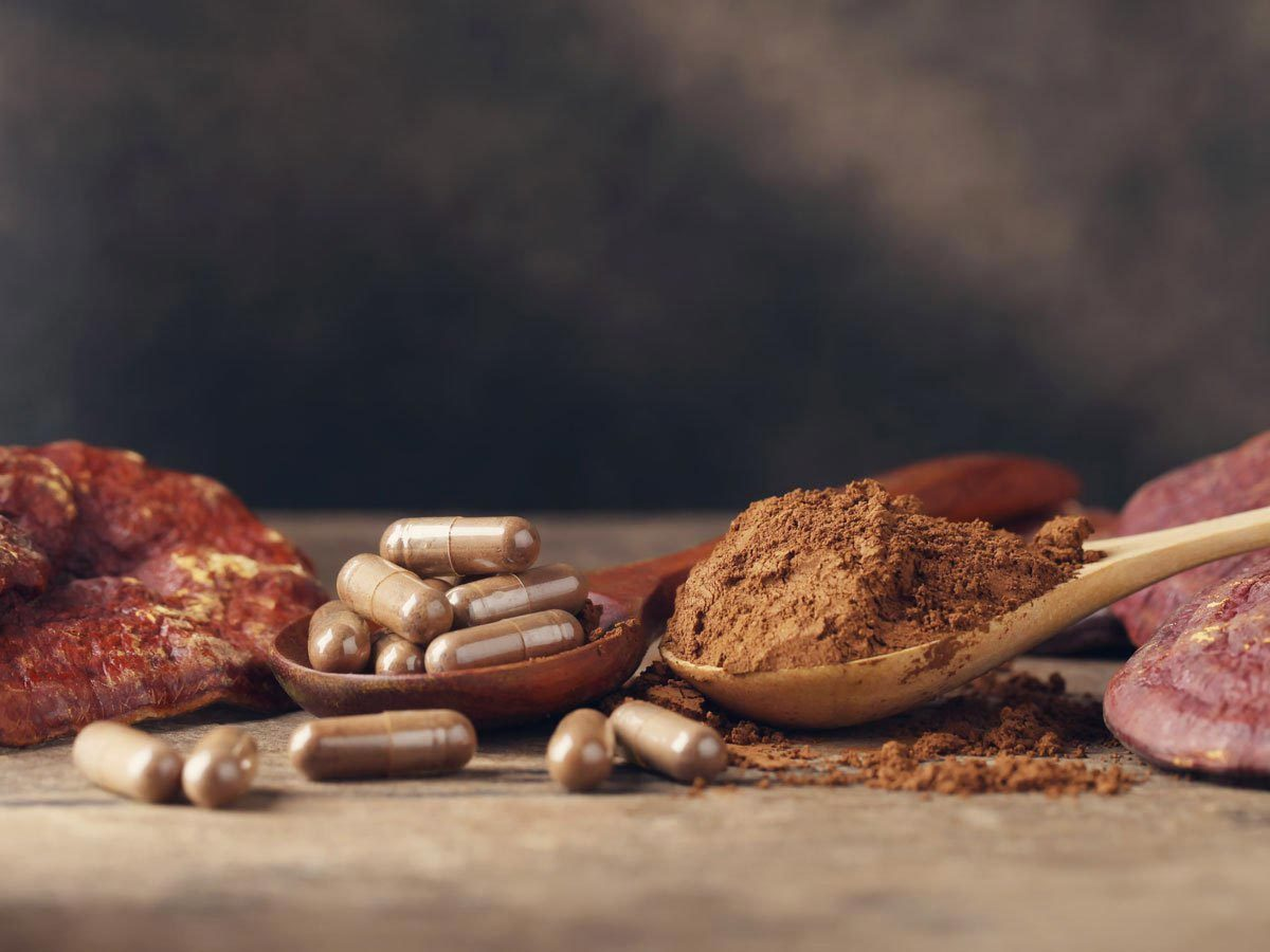 Le champignon améliore la santé des intestins.