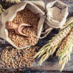 Quoi manger pour stabiliser sa glycémie