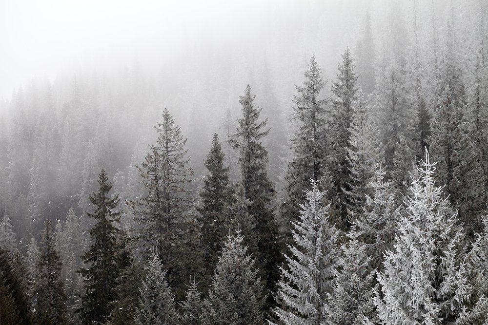 L'hypothermie se traite en se réchauffant.