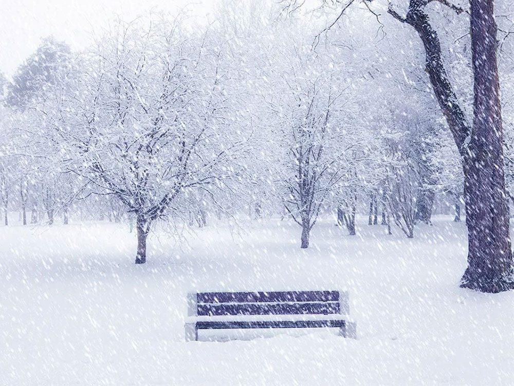 Quand on utilise l'expression «il tombe des peaux de lièvre» pour parler de la météo en hiver.