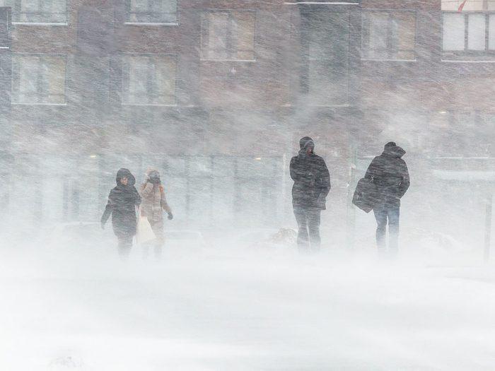 Quand on utilise l'expression «un vent à écorner les bœufs» pour parler de la météo en hiver.
