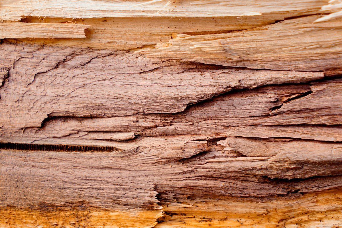 Astuce pour nettoyer : entretenez le bois avec du WD-40.