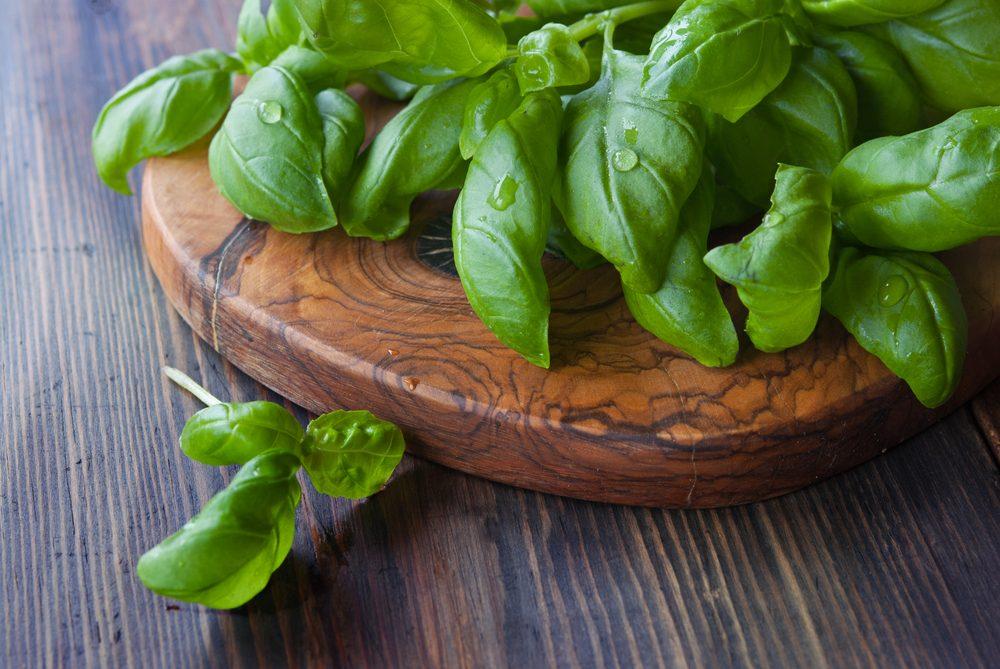 Remèdes maison contre les flatulences : les feuilles de basilic