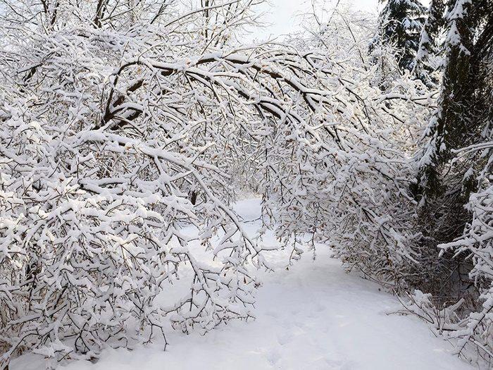 En décembre 1944 s'est déroulée l'une des pires tempêtes de neige du Québec et du Canada.