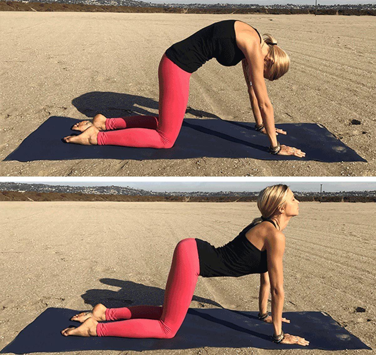 Position de yoga pour la digestion : position chat vache (Marjaryasana et Bitilasana).