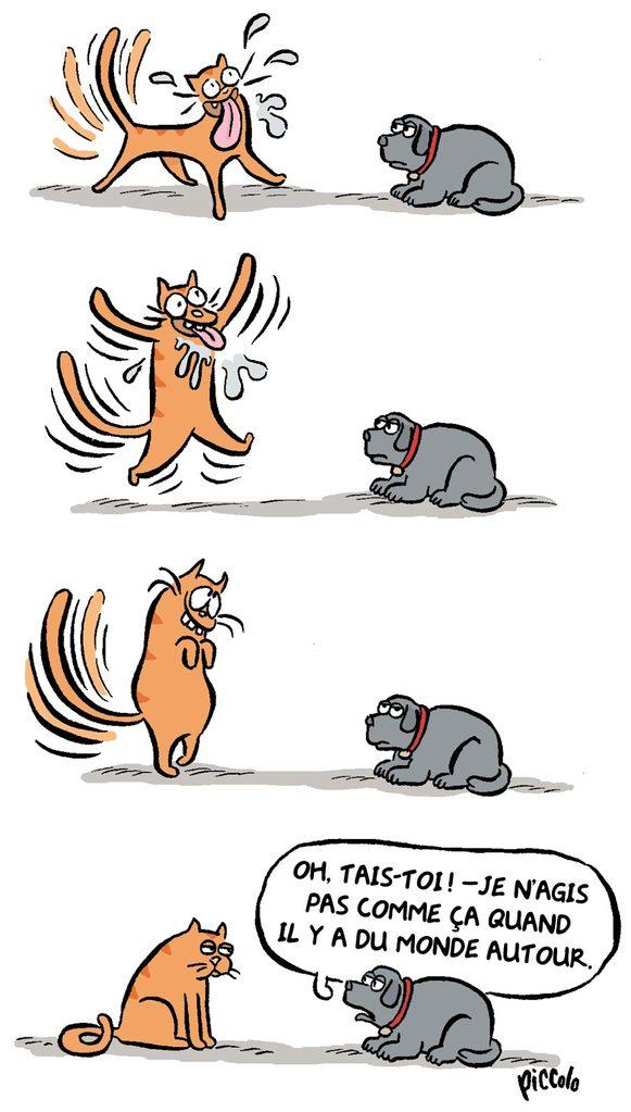 Blague sur les chats et les chiens.
