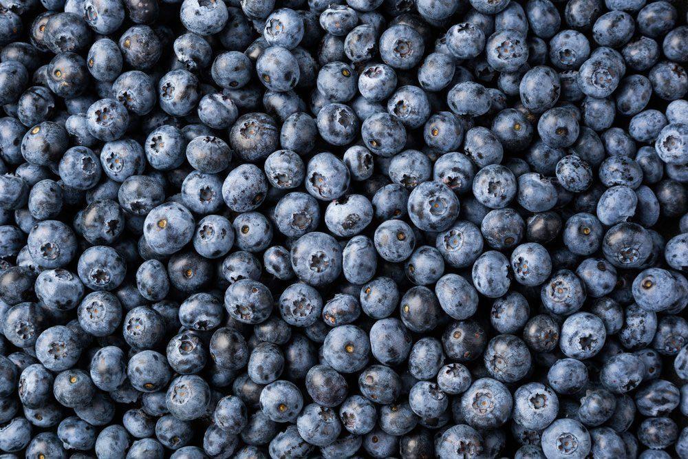 Cancer col utérus : les bleuets peuvent renforcer l'efficacité de la radiothérapie.