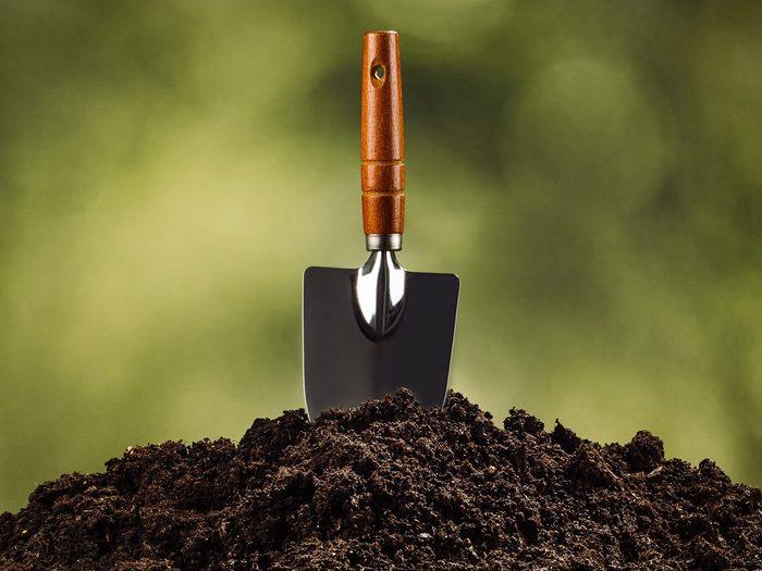 Fait scientifique: le sol est vivant et bien portant.