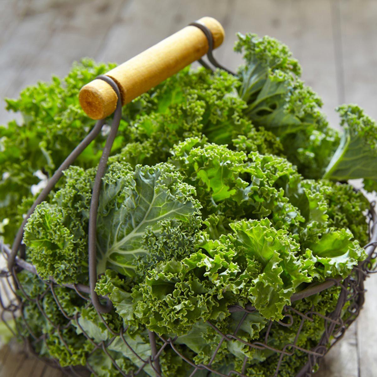 Les meilleurs aliments pour avoir une belle peau : le chou kale.