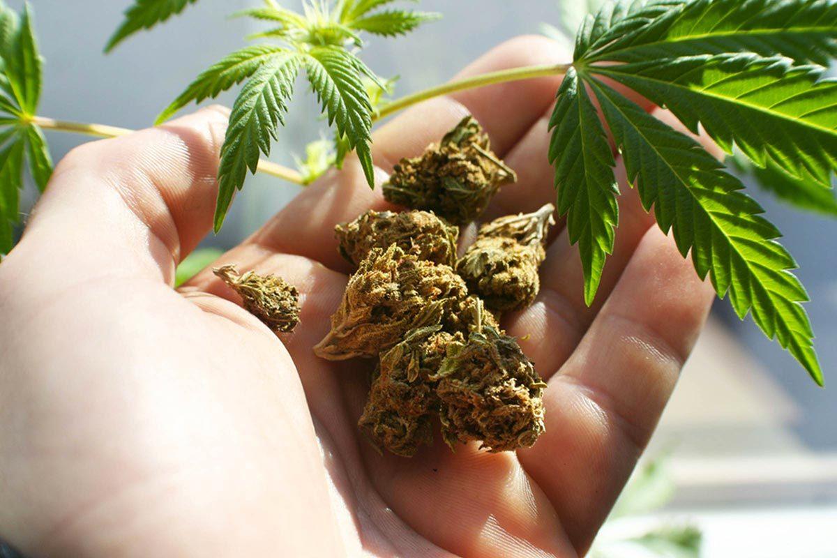 Protéger vos yeux en évitant la marijuana.