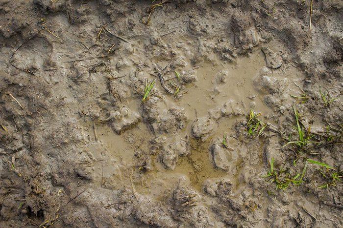 Recyclage maison : Protéger vos chaussures de la boue avec des sacs en plastique
