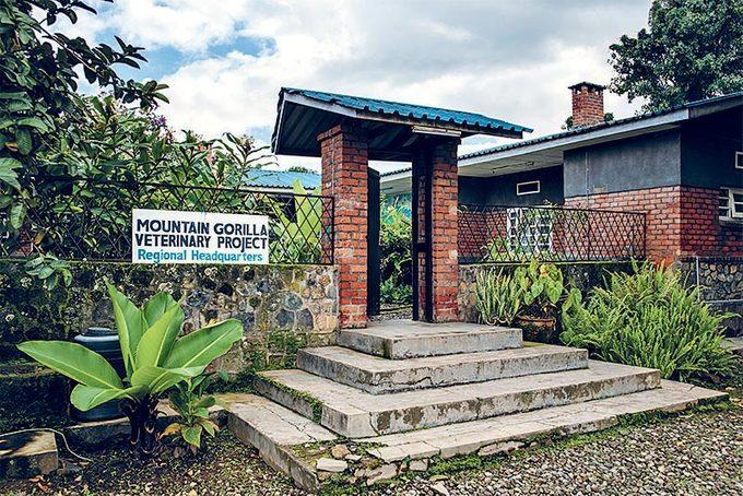 Le centre de vétérinaires de Gorilla Doctors.