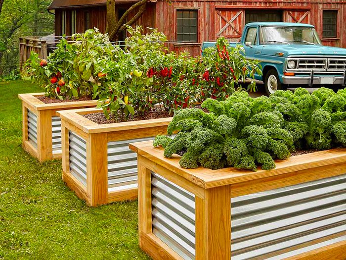 Aménagement paysager: ajoutez des plates-bandes surélevées pour un potager, des herbes aromatiques et des fleurs à couper.