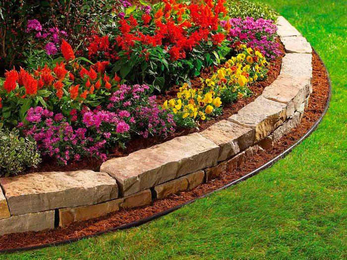 Aménagement paysager: cultivez des vivaces pour presque rien.