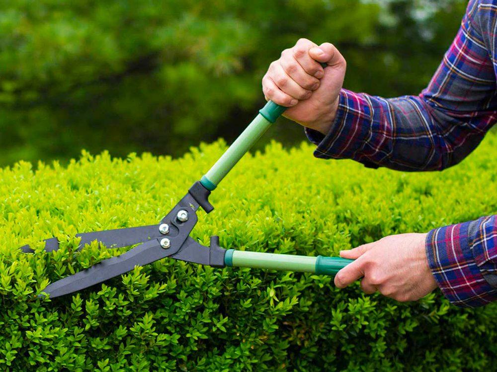 Aménagement paysager: choisissez un style pour votre jardin.